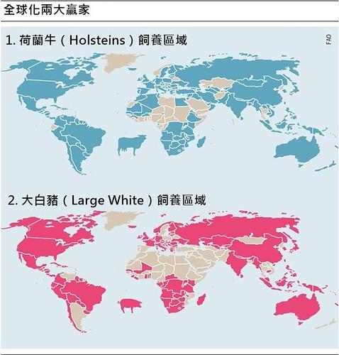 全球化市場下,牲畜的品種幾乎被兩大贏家所「壟斷」。