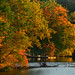 Autumn at the Dock