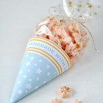 Mint star cone packaging