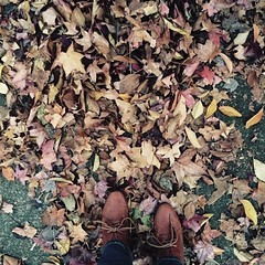 Fall… there you are #ashlandor #thanksgiving #vacation
