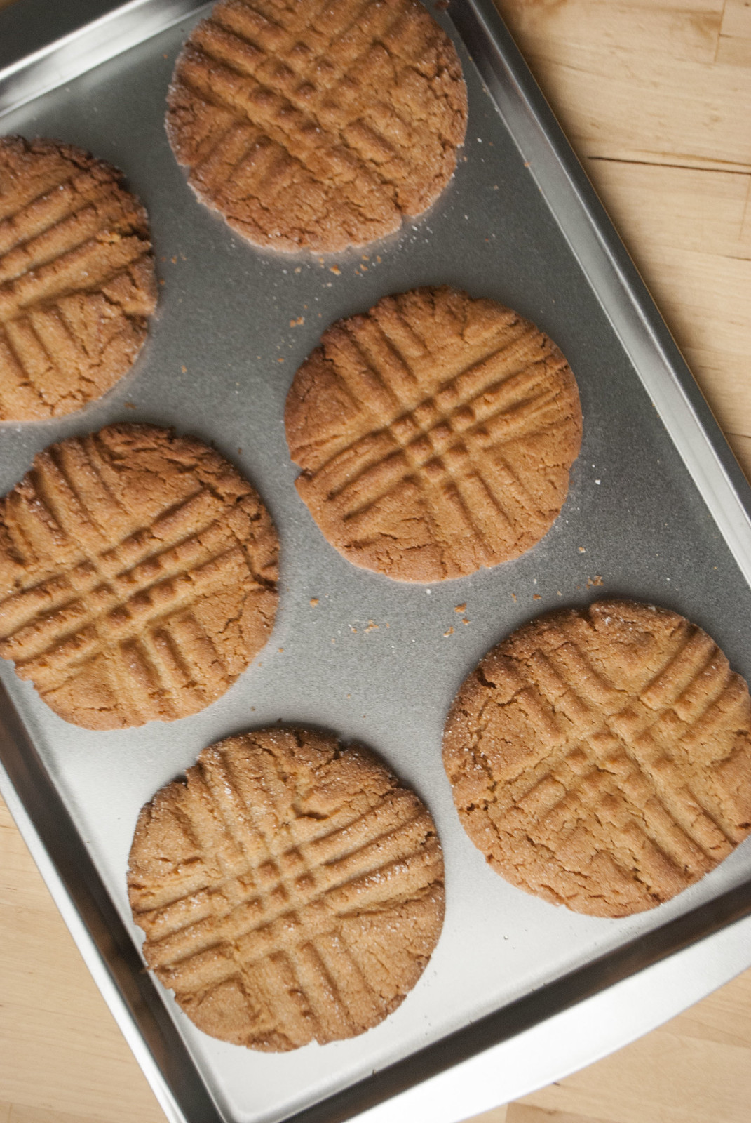 dipped + crisp peanut butter cookies | kitchen in the hills