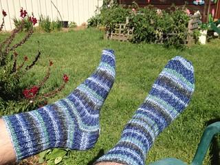 New Year's Thuja socks