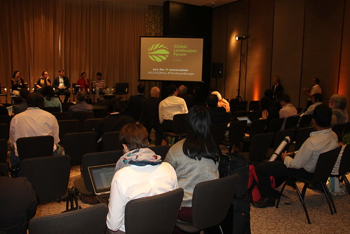 "Participants during the ""Ensuring free, prior and informed consent (FPIC) in REDD+"" side event"