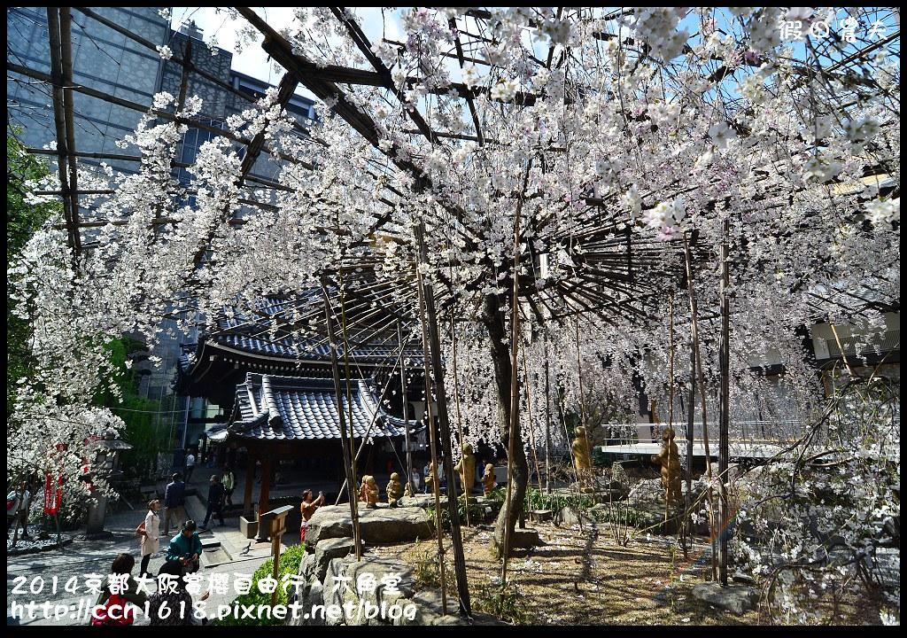 2014京都大阪賞櫻自由行.六角堂DSC_0412
