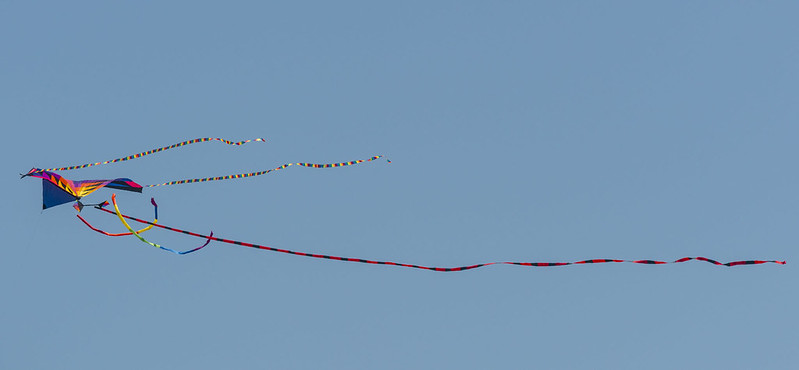Amazing Kite in the Sky Yesterday, Fort Casey State Park, WA