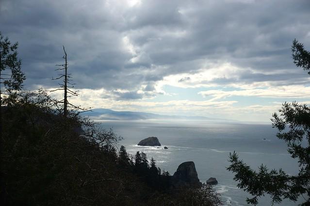 Pacific coast north of Klamath