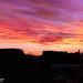 Sunset by Santhosh Seetharaman