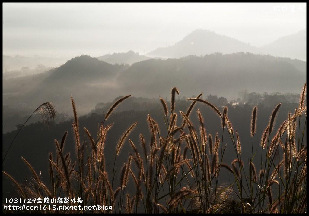 1031129金龍山攝影外拍_DSC6022