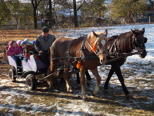 катання на возі, запряженому кіньми (28.10.2014)