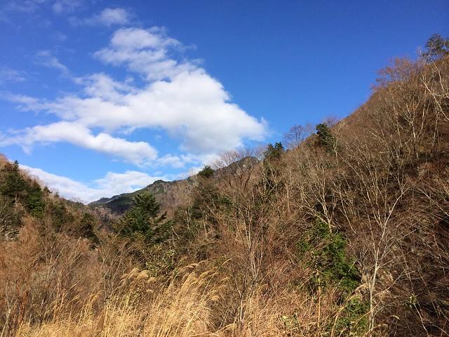 国道309号線からの秋の景色