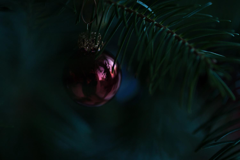 christmas | lili weissensteiner