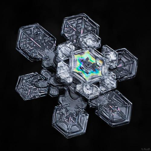 Snowflake-a-Day #16