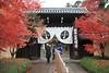 Photo:粟生光明寺-komyo-ji (總門) By 歲月之歌