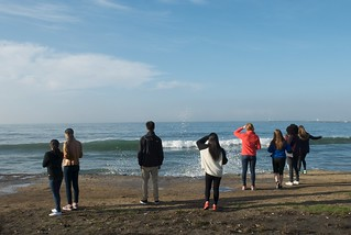 King Tide Observation