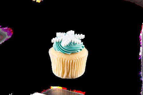 Vanilla Vanilla Christmas Cupcake