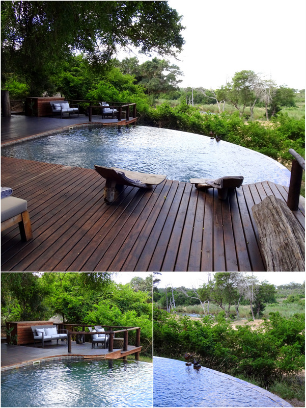 Lion Sands River Lodge Pool