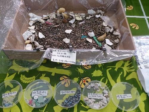 海灘上有各式各樣的塑膠微粒;圖片來源:荒野保護協會