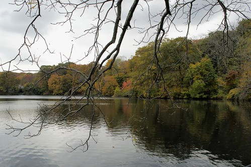 park autumn stonybrook nikond3200 inexplore avalonparkpreserve