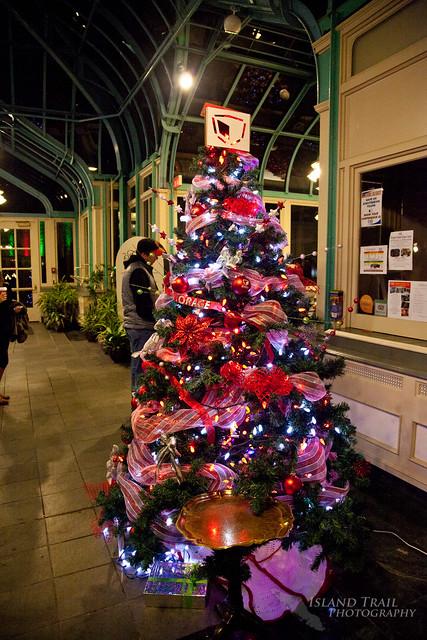 Festival of Trees - 2014.12.19-9513