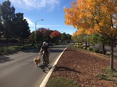 Paseo Verde @ Henderson Ciclovía 11.2014