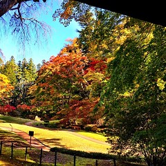 Pretty nice backyard for the imperial family, #nikko