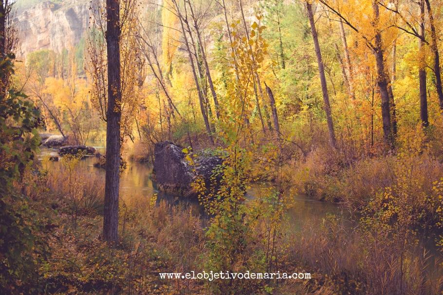Rios de otoño