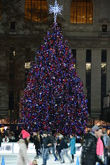 Picture Of Bryant Park 2014 Christmas Tree Lit Up For The 2014 Holiday Season On December 2, 2014. The Tree Is A 50-Foot Norway Spruce. Picture Taken Thursday December 4, 2014
