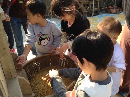 孩子們在黃金穀粒前流連忘返。
