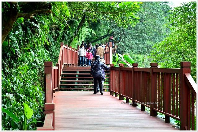 十分瀑布公園眼鏡洞瀑布022-DSC_0628