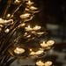 Duomo Candles 2