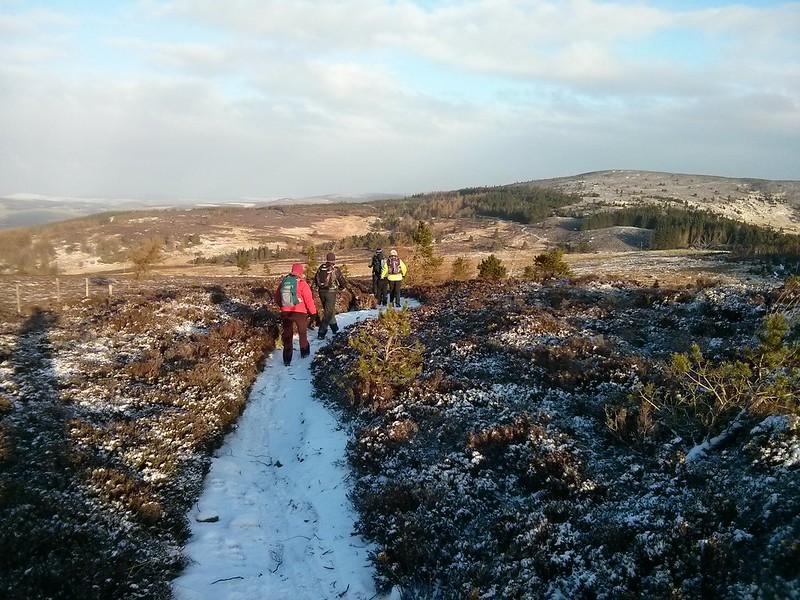 Descending Green Hill