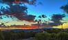 Adelaide Sunrise