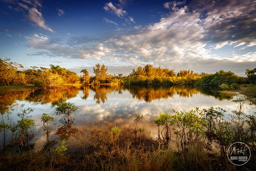 lake reflections florida mangroves matheson coralgables mathesonhammock mariohoubenphotography