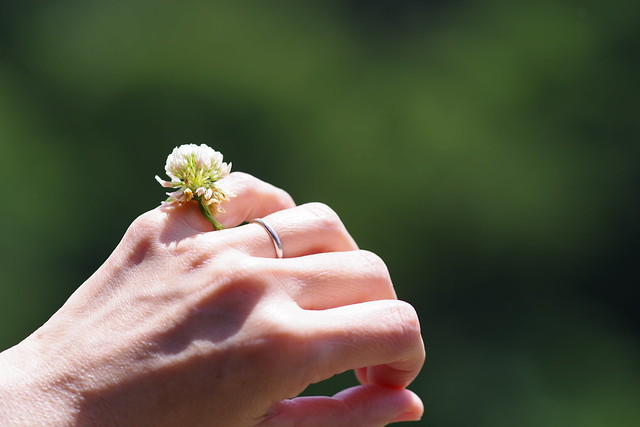 Clover flower ring