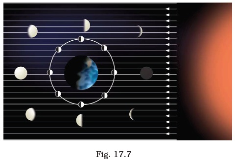 Stars and Solar System