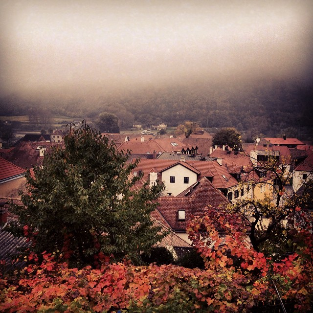 Auf der Burg in Weissenkirchen, in den Nebel © diekremserin