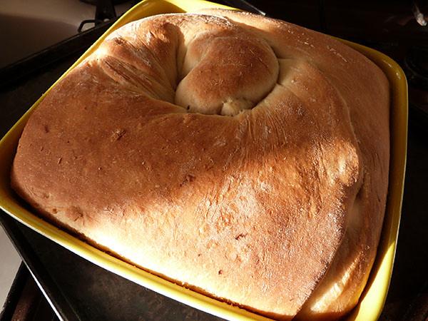 lardy cake cuit