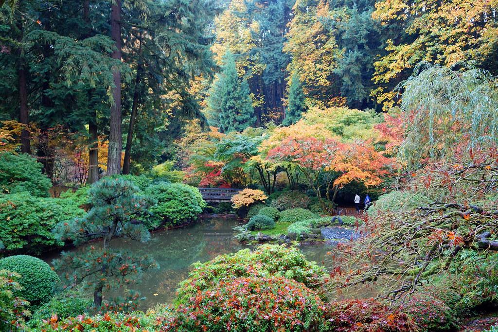 Portland Japanese Garden 11.09.14