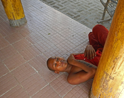 Siesta Time in the Temple