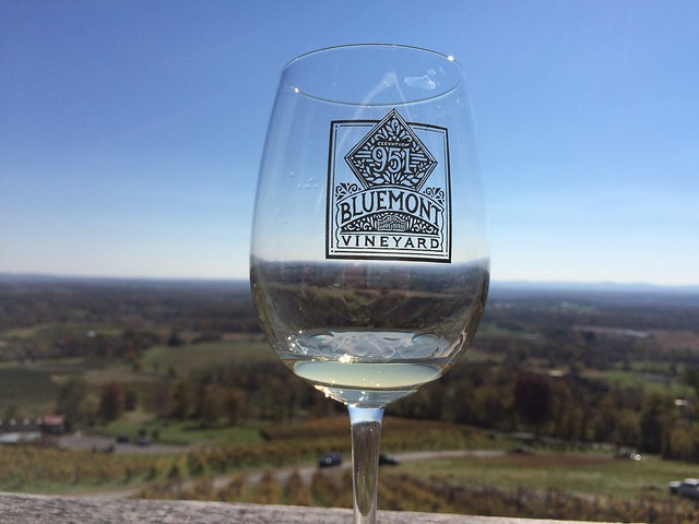Wine tasting - Bluemont Vineyard
