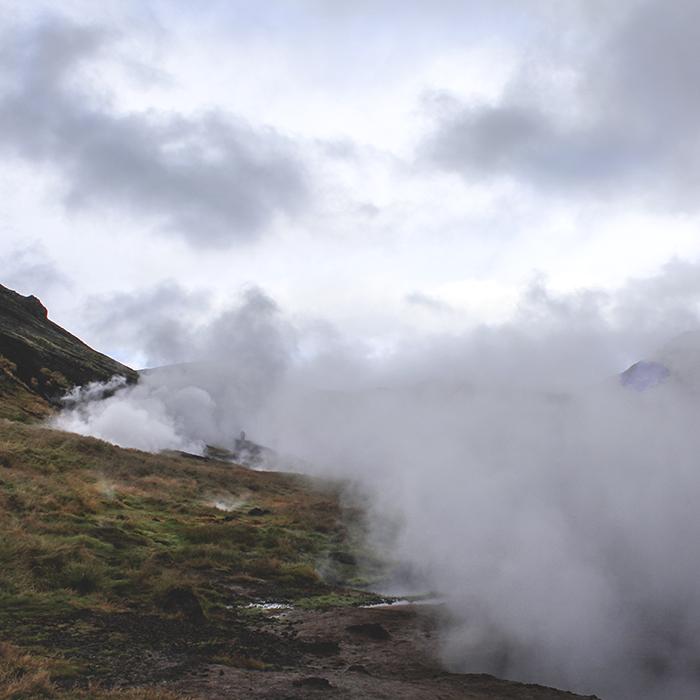 Iceland_Spiegeleule_August2014 041