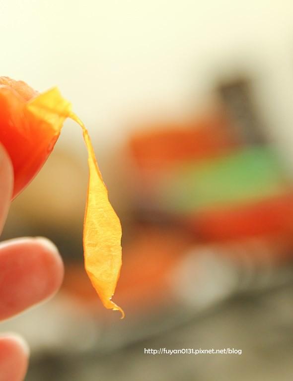 番茄 (6)