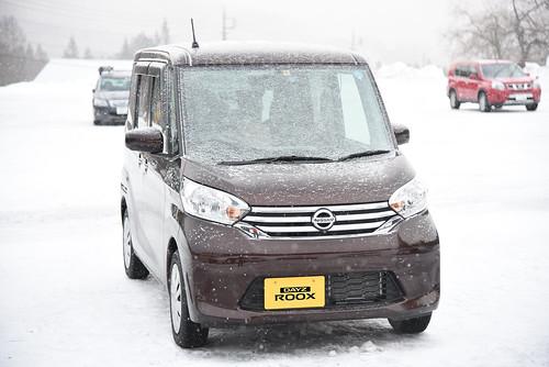 daysroox-snow