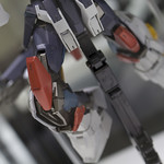 GBWC2014_World_representative_exhibitions-201