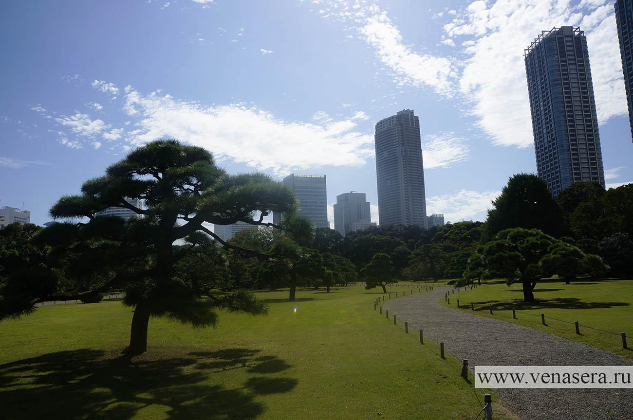 Парк Хама Рикю. Сад Хама Рикю.