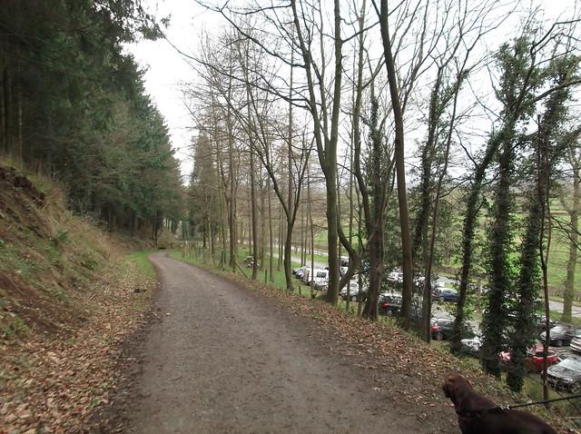 breidden hill 047
