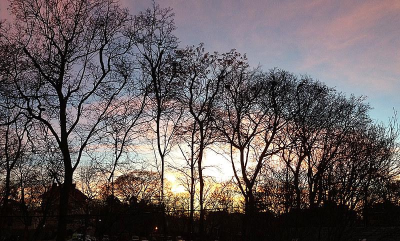 sunset3074