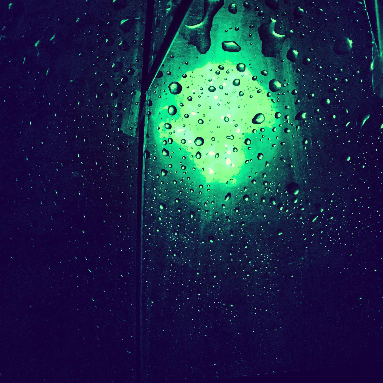 Admiring the lights from under an umbrella