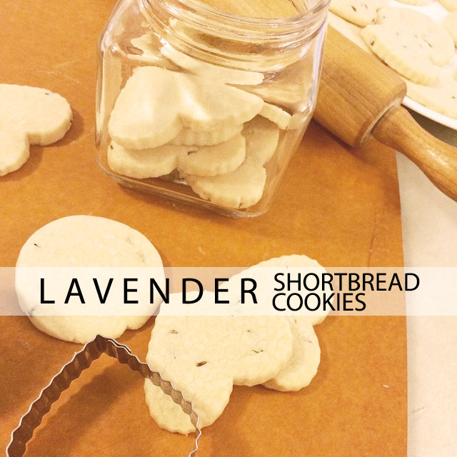 lavender-shortbreadcookies by thedemuremuse.com