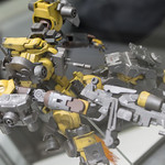 GBWC2014_World_representative_exhibitions-255